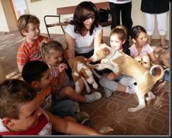 cachorros 028