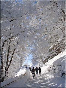 Zaldiaran en invierno