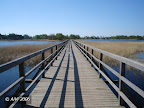 Pėsčiųjų tiltas