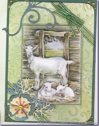 carte 3d chèvres
