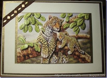 carte 3D tigres