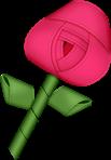 BBD_rose2