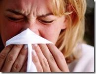 Allergies--320--1