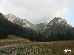 Tatry - Dolina Kościeliska