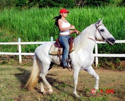 egua pocoto