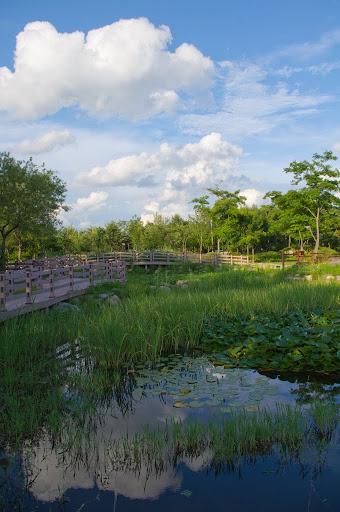 대전 한밭수목원