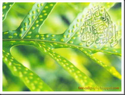 free xp wallpapers download. wallpaper xp download, free download wallpaper xp, arabic calligraphy