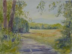 Meadow-along-Hays-Greenway
