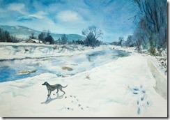 Aldridge-Creek-in-Winter