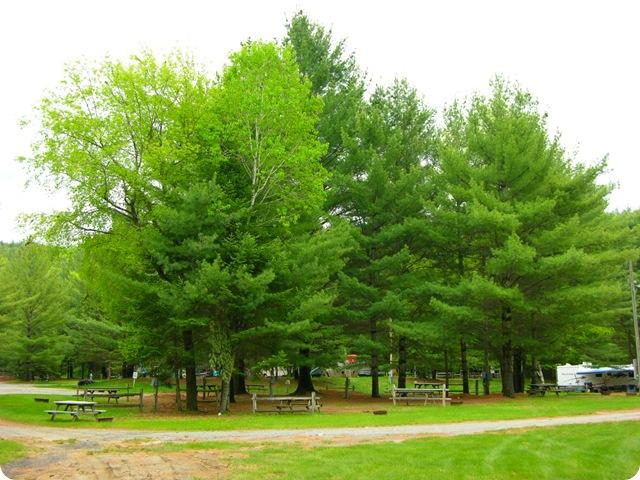 Campsites At Paradise Pines