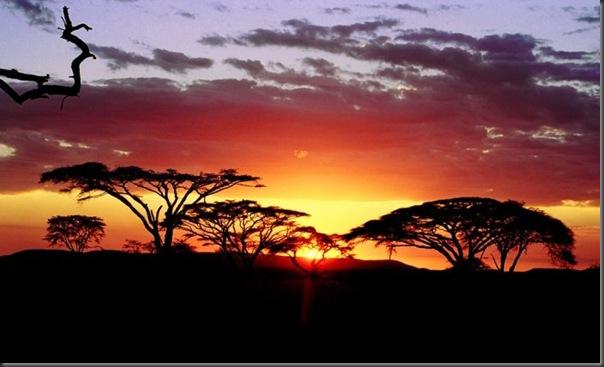 Lindas imagens da africa (6)