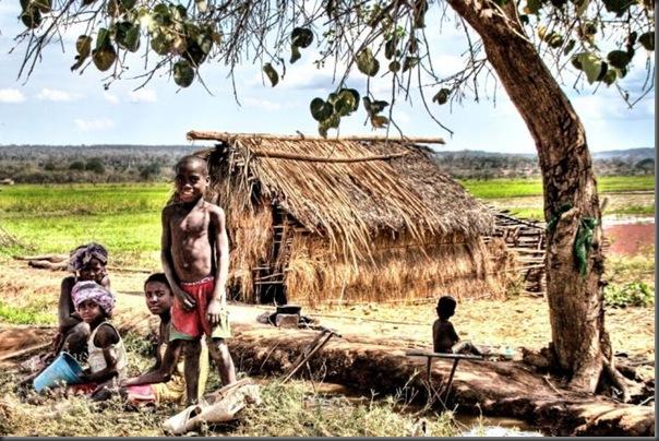 Lindas imagens da africa (22)