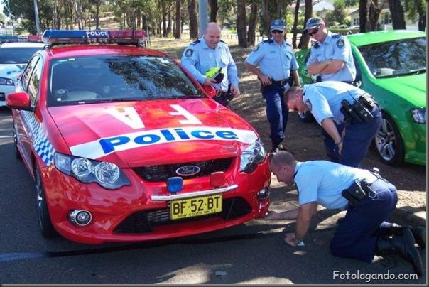 Uma pequena surpresa no carro da policia