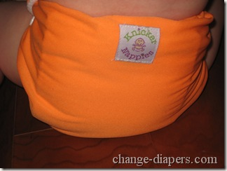 back of knickernappies 2g pocket diaper