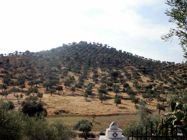 Cerro del Pico de la Perdiz desde el cortijo del mismo nombre