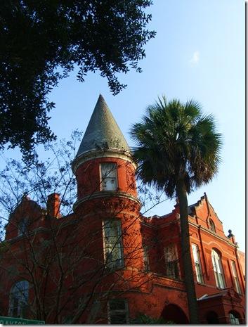 Savannah 082