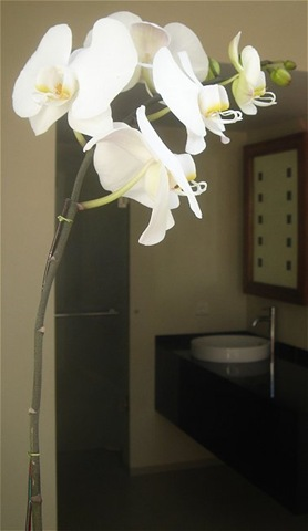 Orchid in bathroom of Villa Sabandari, a luxury Bali hotel in Ubud