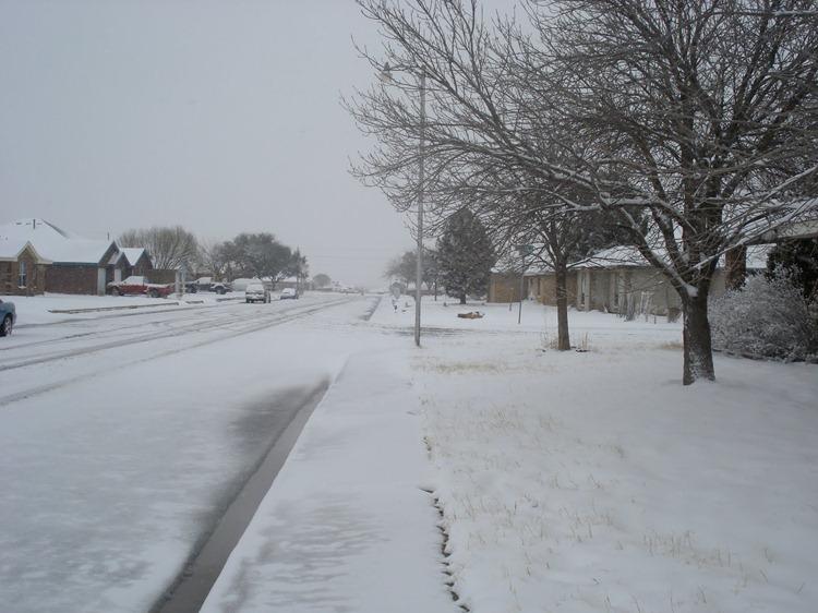 02-23-2010 Snow