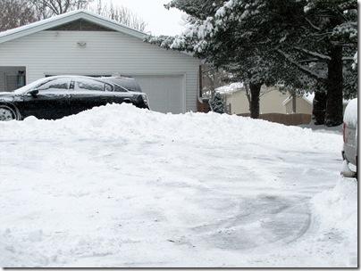 Snow01-20-11c