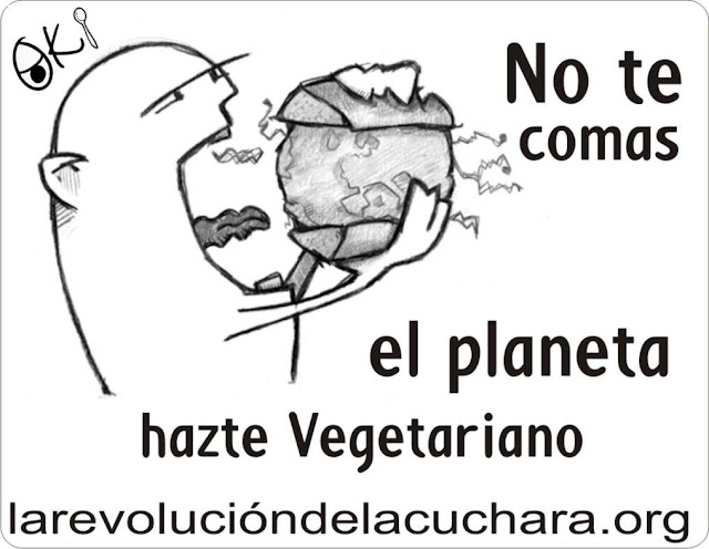 Razones para ser vegetariano