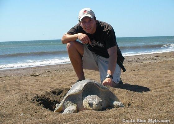 Costa Rica Turtle 2