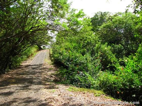 Costa Rica Roads