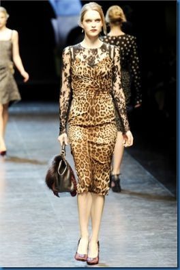 Gucci animalier photos_7