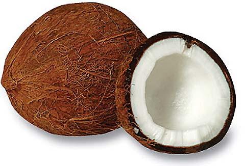 кокос происхождение кокосовое молоко хранение кокосов