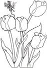 flores_60