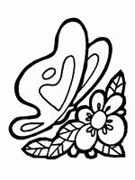 jyc mariposas (20)