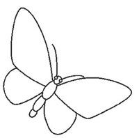 jyc mariposas (25)