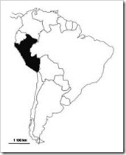 Situacion Peru  jugarycolorear