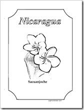 Sacuanjoche 1