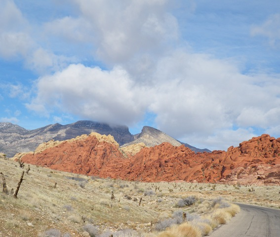 Red Rock Canyon (17)