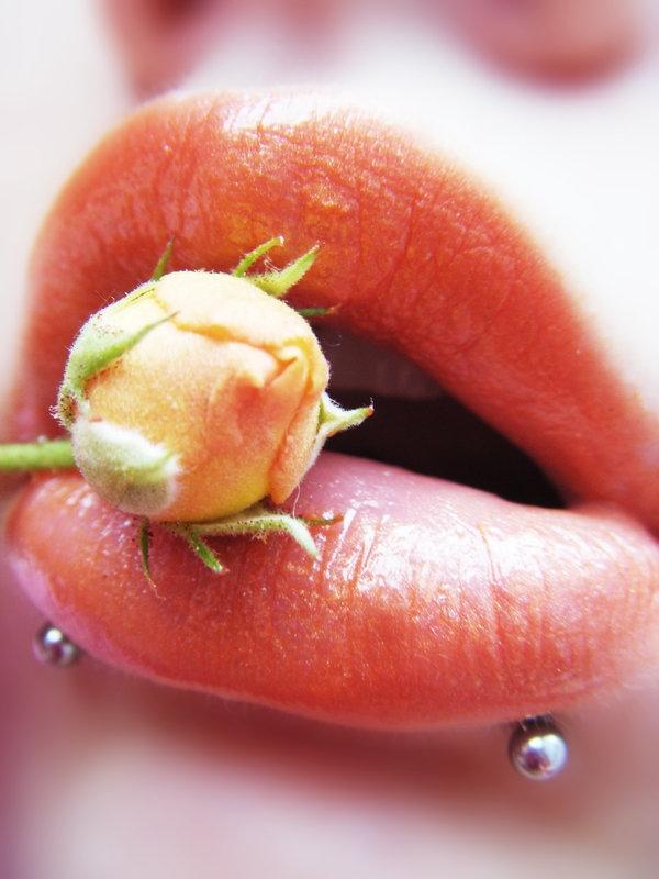 Lábios sensuais e Seductive