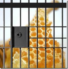 Honeycomb open source