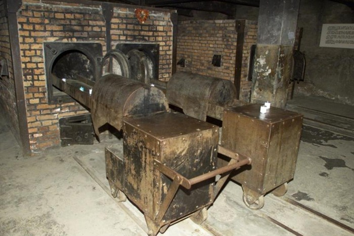 Auschwitz (8)