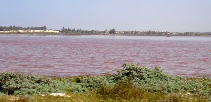 The Pink Lake at Retba, Senegal