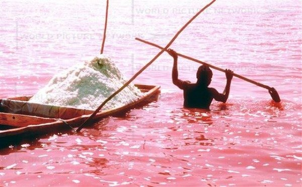 pink-lake-retba (2)