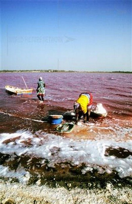 pink-lake-retba (6)