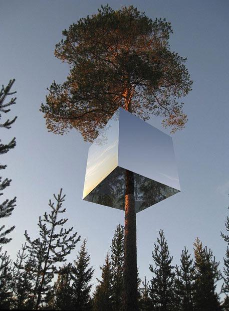 tree-hotel (9)