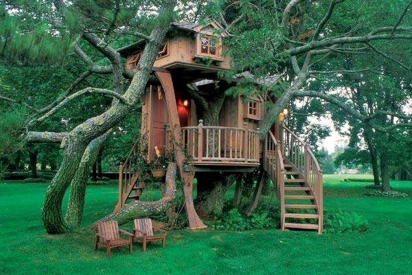 peter-nelson-treehouse (2)