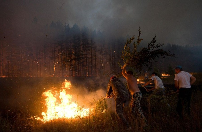 russia-forest-fire (6)