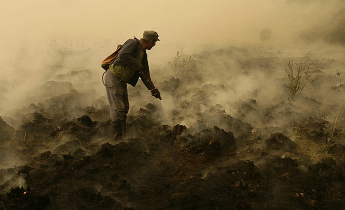 russia-forest-fire (46)
