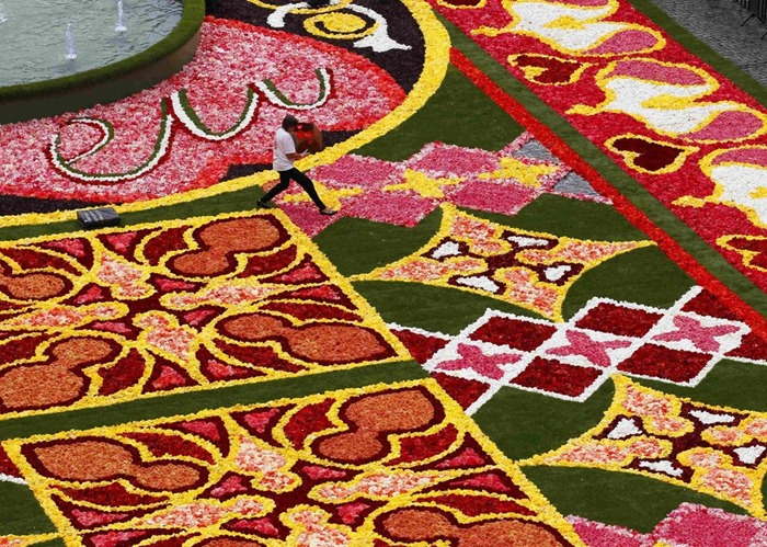 brussels-flower-carpet (3)