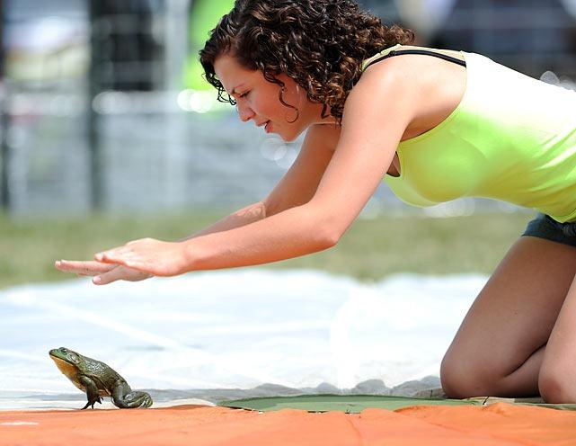 frog-jump-festival (3)