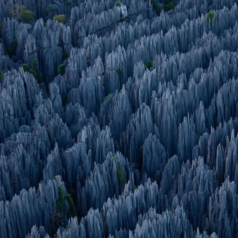 Tsingy: The Stone Forest of Madagascar
