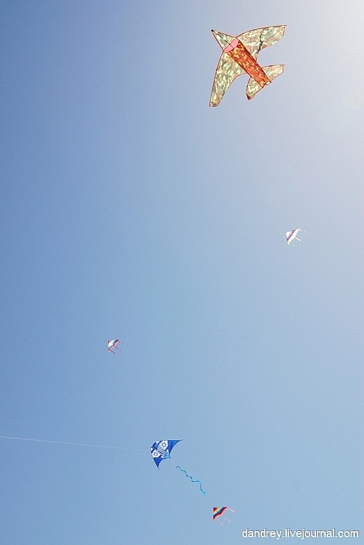 japanese-kite-festival (10)