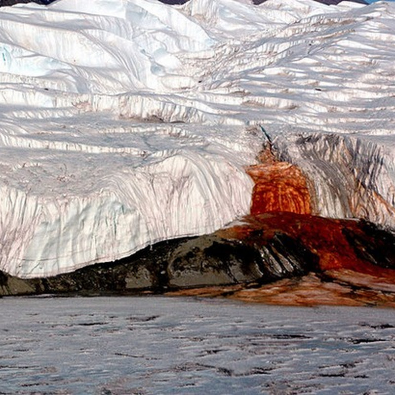 The Secret of the Blood Falls of Antarctica