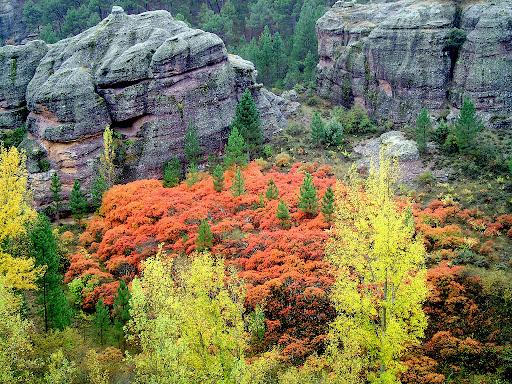 Colores de otoño en Boniches (Cuenca).
